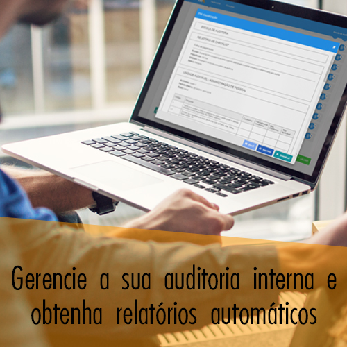 Software de Auditoria Interna
